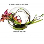 Glass Ball Vase - Two Sides Open Large